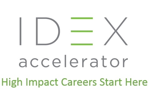 IDEX Fellowship (India)
