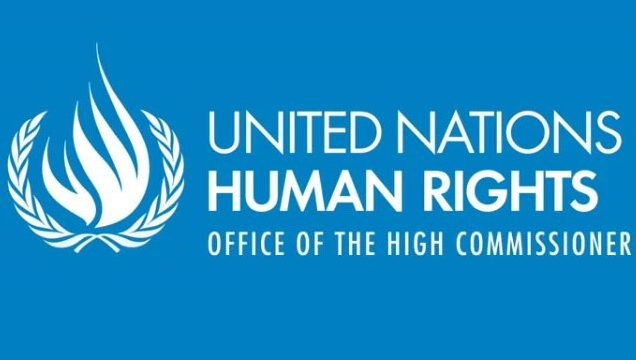 OHCHR Indigenous Fellowship (Suiza)
