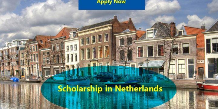 Leiden University Excellence Scholarships (Holanda)