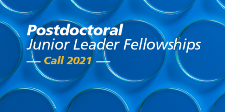 Junior Leader fellowships (Portugal)