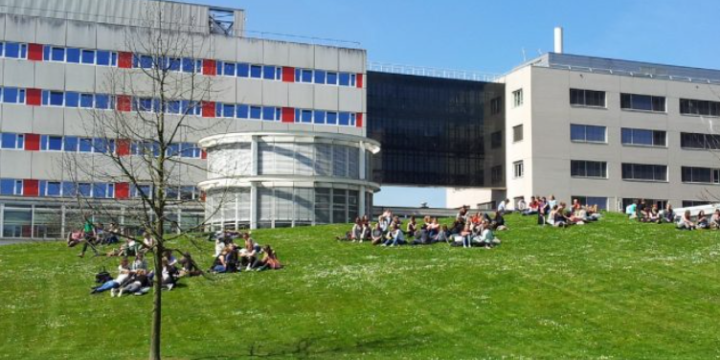 Holland High Potential Scholarship (Holanda)