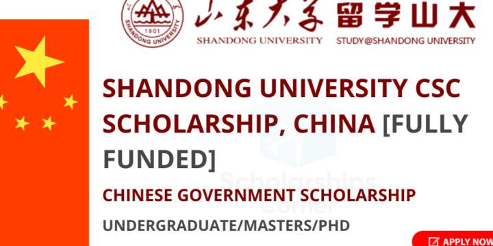 Shandong University Scholarship (China)